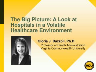The Big Picture: A Look at Hospitals in a Volatile Healthcare Environment