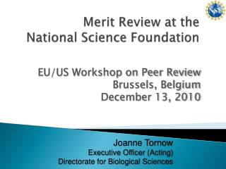 Merit  Review  at the  National Science Foundation