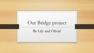 Our Bridge project