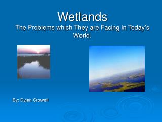 Wetlands The Problems which They are Facing in Today's World.