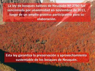 Esta ley garantiza la preservaci�n y aprovechamiento  sustentable de los bosques de Neuqu�n.