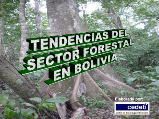 TENDENCIAS DEL  SECTOR FORESTAL  EN BOLIVIA