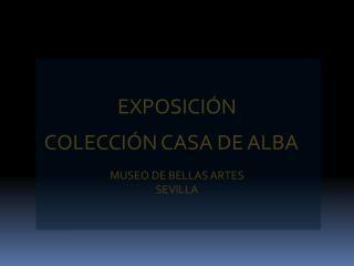 COLECCIÓN CASA DE ALBA