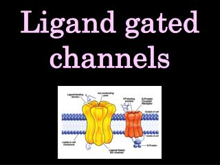 Ligand gated channels