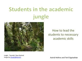 How  to lead  the  students to  necessary academic  skills