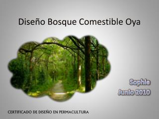 Diseño Bosque Comestible  Oya