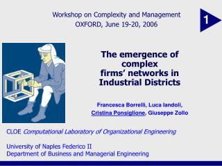 The emergence of complex  firms' networks in Industrial Districts