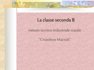La classe seconda B istituto tecnico industriale statale  �Cristoforo Marzoli�