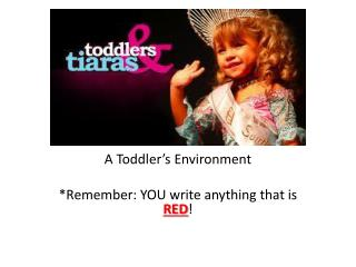 A Toddler's Environment *Remember: YOU write anything that is  RED !