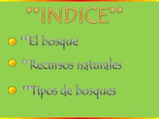 **INDICE**