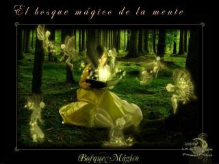 El bosque mágico de la mente