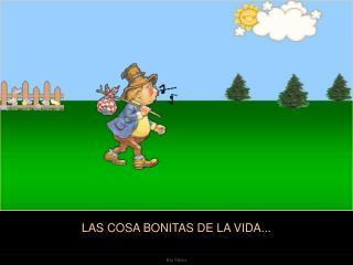 LAS COSA BONITAS DE LA VIDA...