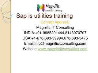 sap is utilities training