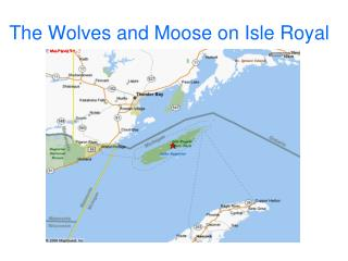 The Wolves and Moose on Isle Royal