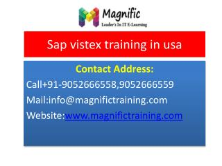 sap vistex training in usa