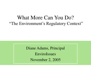 "What More Can You Do?  ""The Environment's Regulatory Context"""