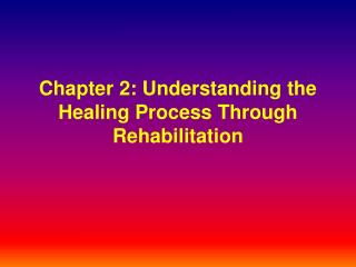 Chapter 2: Understanding the Healing Process Through Rehabilitation