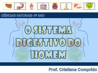 O sistema digestivo do homem