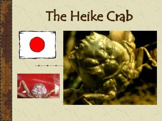 The Heike Crab