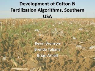 Development of Cotton N Fertilization Algorithms, Southern USA