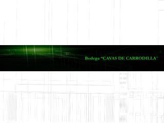 """Bodega """"CAVAS DE CARRODILLA """""""