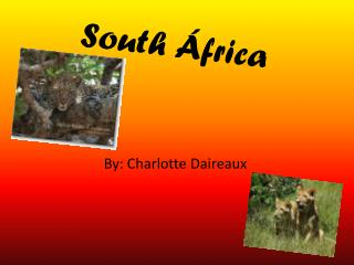 South �frica