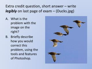 Extra credit question, short answer – write  legibly  on last page of exam – (Ducks.jpg)