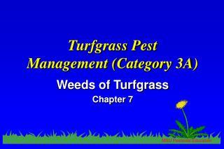 Turfgrass Pest  Management (Category 3A)