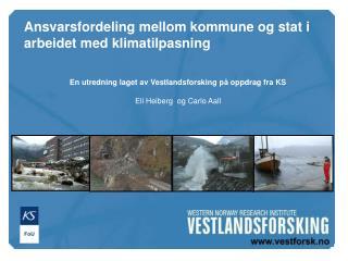En utredning laget av Vestlandsforsking på oppdrag fra KS Eli Heiberg  og Carlo Aall