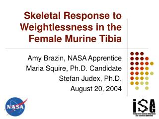 Skeletal Response to Weightlessness in the Female Murine Tibia
