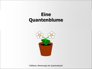 Eine  Quantenblume