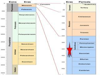 Paleozoic Era  Carboniferous Period