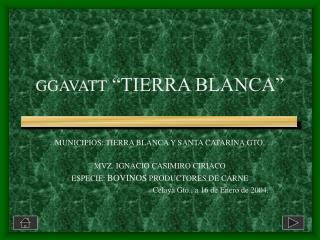 GGAVATT  �TIERRA BLANCA�