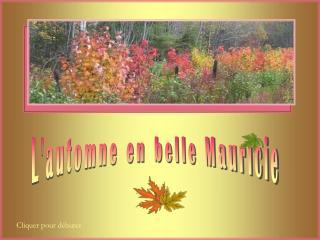 L'automne en belle Mauricie