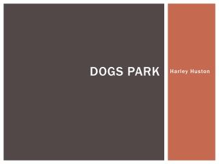 Dogs Park