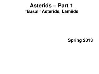 "Asterids  – Part 1 ""Basal""  Asterids ,  Lamiids"