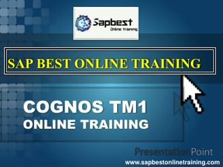 COGNOS/PLANNING ONLINE TRAINING | COGNOS/PLANNING Project Su