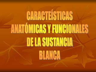 CARACTEÍSTICAS ANATÓMICAS Y FUNCIONALES DE LA SUSTANCIA BLANCA