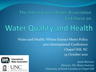 The International Water Association  Task Force on