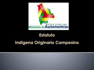 Estatuto  Indigena Originario Campesino