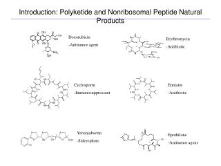 Introduction: Polyketide and Nonribosomal Peptide Natural Products