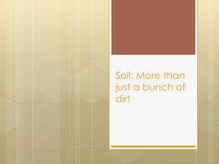 Soil: More than just a bunch of dirt