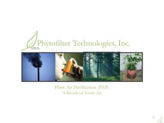 Plant Air Purification (PAP) A Breath of Fresh Air
