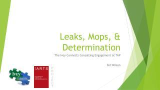 Leaks,  Mops , & Determination