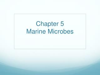 Chapter 5  Marine Microbes