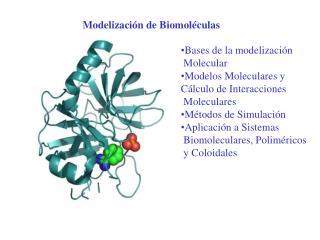 Modelización de Biomoléculas
