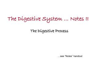 The Digestive System … Notes II