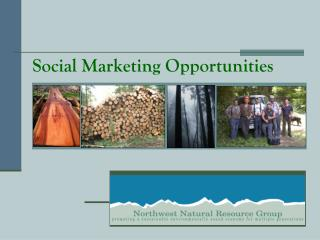 Social Marketing Opportunities