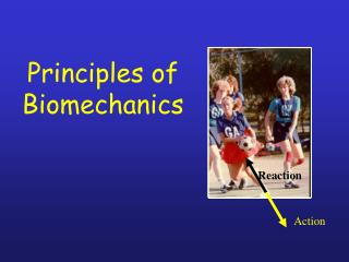 Principles of Biomechanics