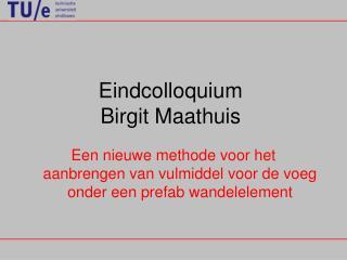 Eindcolloquium  Birgit Maathuis